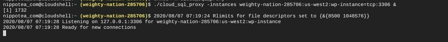 ターミナル:cloud_sql_proxy を実行