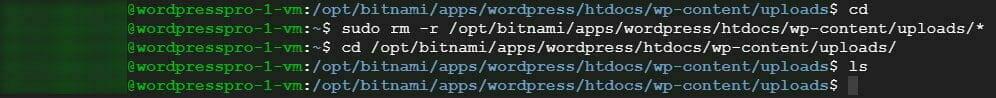 ターミナル:ディレクトリ内のファイルを削除し、削除確認