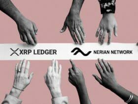 XRP Ledger の NERIAN NETWORK